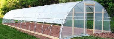 planting_greenhouse