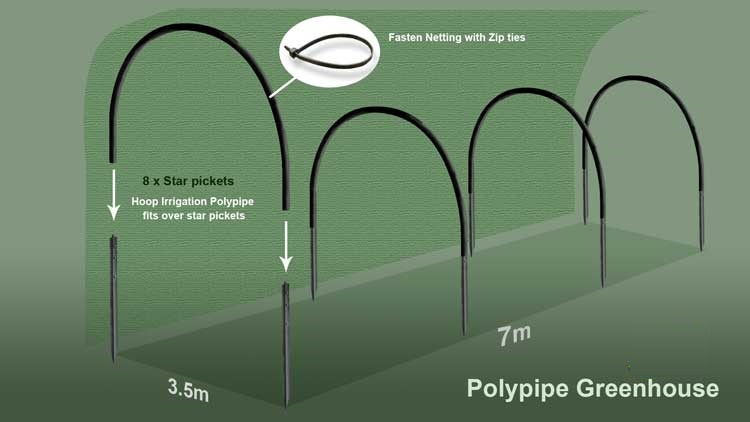 plants_polypipegreenhouse